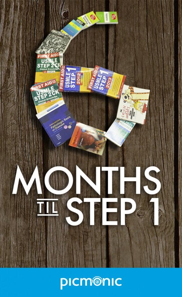 usmle step 1 6 months